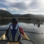 Bilde fra Half Collared Kingfisher Trail