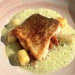 Gebratenes Filet vom Ostsee-Kabeljau mit Ratatouille & Thymian-Gnocchi