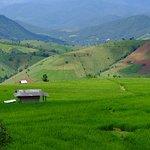 Foto de Pa Pong Pieng