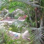 La vegetacion que te rodea y te relaja
