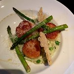 Scallops and risotto