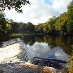 Bilde fra Roe Valley Country Park