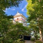 Photo of Kubota Castle