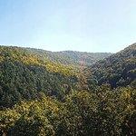 Szalajka Valley Foto
