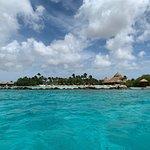 Φωτογραφία: Dive Aruba