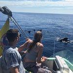 Photo of Sea Passion Charter y Pesca