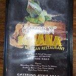 Photo de Green Iguana