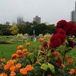 ภาพถ่ายของ Lincoln Park