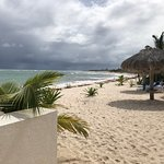 Photo of Beached Bikini Bar and Grill