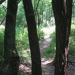 Foto de Round Valley Recreation Area