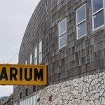 Old Aqurium
