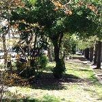 Diagonal Pueyrredonの写真