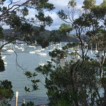 A view of the Hawkesbury river from a lookout near the Riverboat's berth