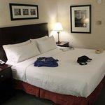 Holiday Inn Rosslyn @ Key Bridge Photo