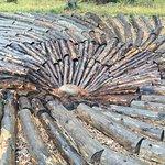 Blackfoot Pathways:Sculpture in the Wild照片
