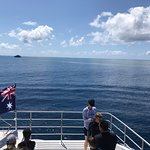 Φωτογραφία: Calypso Reef Cruises