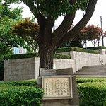 Фотография Huangpu Park