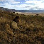 Bilde fra Uprise Africa Explorer