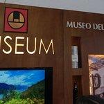 Il primo MUSEO in Italia dell'olio