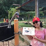 Foto di PD Ostrich Show Farm