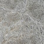Salt surface on lake.