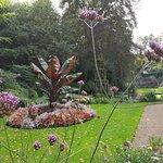 Foto de The Plantation Garden