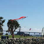 Kite flyers in the park with Coronado Bridge in background