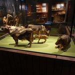 Döderhultarns museum