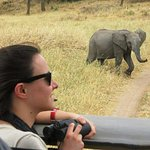 By traveling with IJUE AFRICA SAFARI,you have the chance to feel the nature with its beatiful .