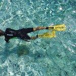 Foto de Ionian Discoveries