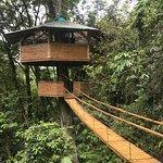 Finca Bellavista Treehouse Community Foto