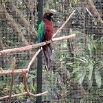 Kula Wild Adventure Park صورة فوتوغرافية