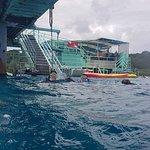 Billede af Fish Eye Marine Park