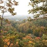 Billede af Tews Falls