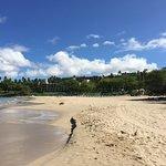 Hapuna Beach looking north