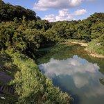 ภาพถ่ายของ Shifen Waterfall Walk Area