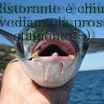 L'approdo Ristorante Bar의 사진