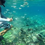Photo de Supi Tour Nusa Penida