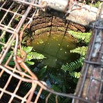 Hang Li Po Wellの写真