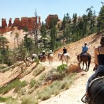 Photo of Canyon Trail Rides