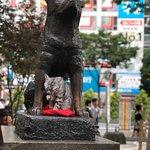 Foto van Hachiko