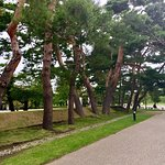 五棱郭公園照片