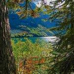 Bild från Rainy Lake