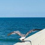 Wrightsville Beach의 사진