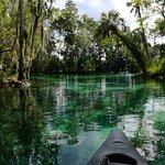 Photo of A Crystal River Kayak Company