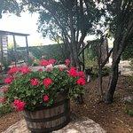 Cabernet Grill Texas Wine Country Restaurant의 사진