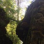 صورة فوتوغرافية لـ Beartown State Park