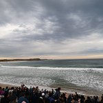 ภาพถ่ายของ Phillip Island Nature Parks - Penguin Parade