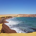 Foto de Reserva Nacional de Paracas