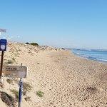 ภาพถ่ายของ Playa Del Pinet